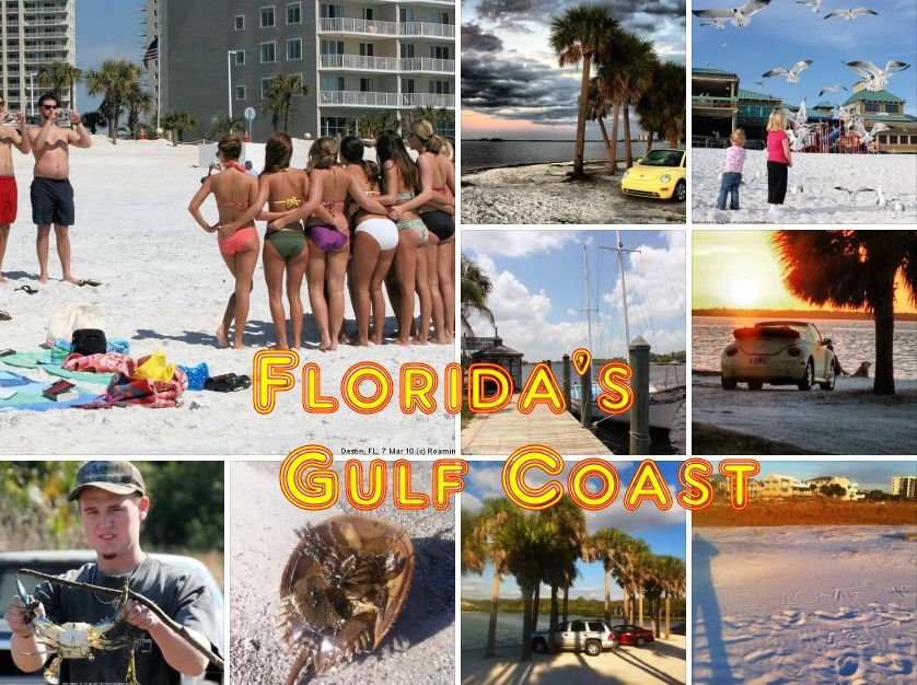 Florida's Gulf Coast (Pensacola to Naples)