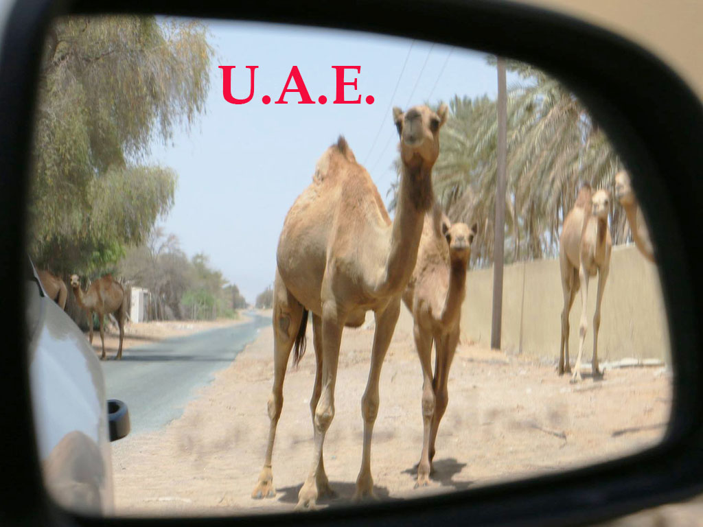 United Arab Emirates - Beyond Dubai