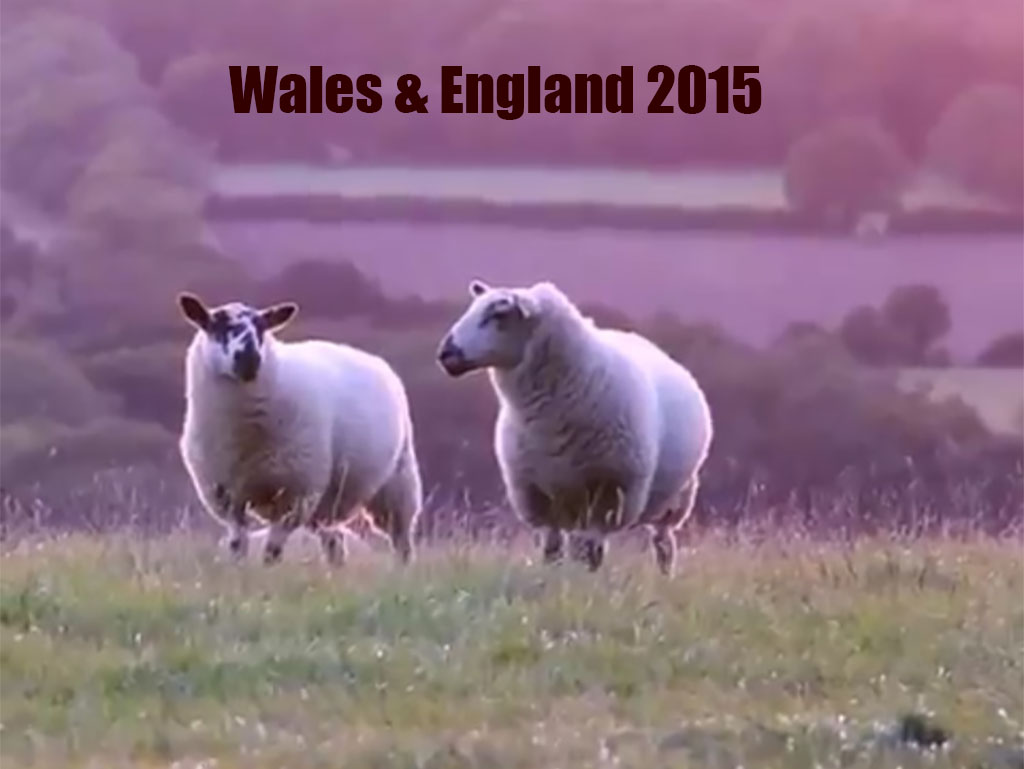 Wales and England 2015