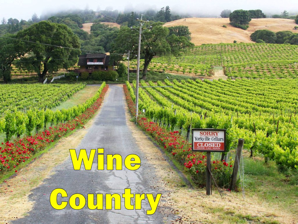 California Wine Country (Napa & Sonoma Counties)