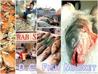 Washington Fish Market