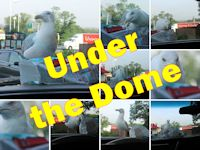 Under The Dome… at McDonalds