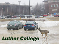 Luther College, Decorah, Iowa