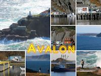 Newfoundland Coast, Avalon Peninsula, Canada
